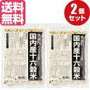 【送料無料】『メール便対応商品』種商 国産十六穀米(もち麦配合)業務用500g×2袋(1kg)