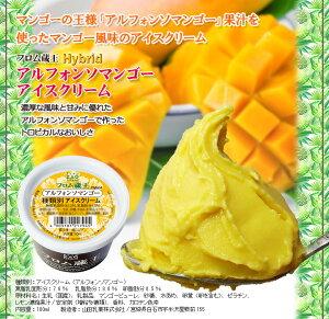 ◆★●選りどり★▼■【送料無料】フロム蔵王Hybrid選りどりマルチアイスBOX24【アイスクリーム】