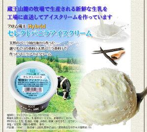 【送料無料】フロム蔵王HybridスーパーマルチアイスBOX24【アイスクリーム】ふるさと割【宮城県_物産展】