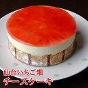 フロム蔵王 仙台いちご畑チーズケーキ4号
