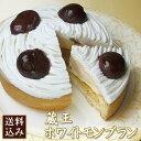 【送料無料】ホワイト・モンブラン4号