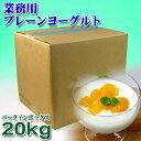 【業務用】フロム蔵王 プレーンヨーグルト(バッグ・イン・ボックス)10kg×2箱(20kg)