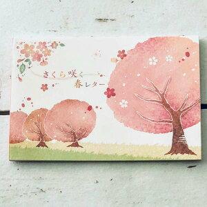 はがき箋 桜並木 フロンティア 春柄 花柄 和柄 和風 デザイン おしゃれ 大人