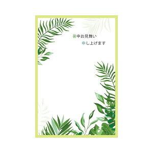サマーポストカード 暑中 リーフ 黄緑枠|npc-266