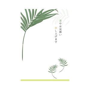 サマーポストカード 暑中 リーフ 黄緑線|npc-268