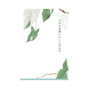 サマーポストカード 暑中 リーフ 水色線|npc-269