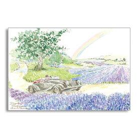 ポストカード イギリスラベンダーの丘 フロンティア デザイン おしゃれ 大人