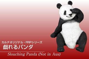FRP戯れるパンダ