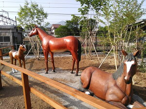 FRP強壮と立ち振る舞う馬