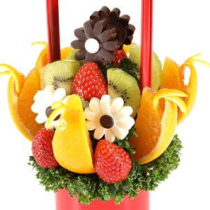 Daisy (デイジー) フルーツギフト 母の日 いちご 苺 チョコレート お祝い サプライズ プレゼント 誕生日 結婚 記念日 結婚祝い インスタ映え 贈り物 スイーツ ケーキ 果物