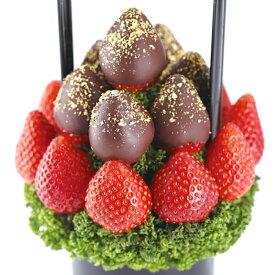 Petit BERRY BERRY(プチベリーベリー黒) フルーツギフト いちご 苺 チョコレート ホワイトデー お祝い サプライズ プレゼント 誕生日 結婚 記念日 結婚祝い インスタ映え 贈り物 スイーツ ケーキ 果物