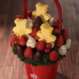 Teddy Berry(テディベリー) Mサイズ フルーツギフト いちご 苺 チョコレート ホワイトデー お祝い サプライズ プレゼント 誕生日 結婚 記念日 結婚祝い インスタ映え 贈り物 スイーツ ケーキ 果物