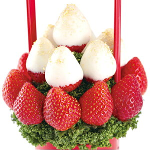 Petit BERRY BERRY(プチベリーベリー白) フルーツギフト 母の日 いちご 苺 チョコレート お祝い サプライズ プレゼント 誕生日 結婚 記念日 結婚祝い インスタ映え 贈り物 スイーツ ケーキ 果物