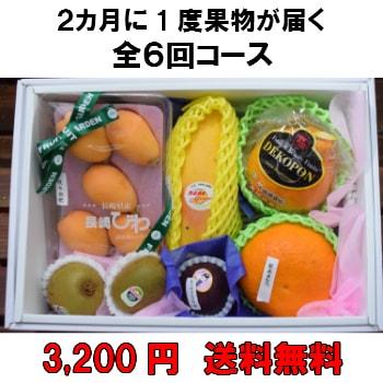 2カ月に1度果物が届く全6回【3,200円】 送料無料 100年以上続く老舗果物屋の3代目が選ぶ果物の盛り合わせ定期購入