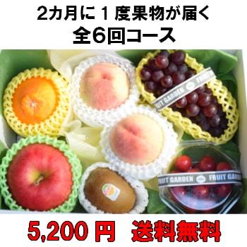 2カ月に1度果物が届く全6回【5,200円】 送料無料 100年以上続く老舗果物屋の3代目が選ぶ果物の盛り合わせ定期購入