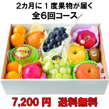 2カ月に1度果物が届く全6回【7,200円】 送料無料 100年以上続く老舗果物屋の3代目が選ぶ果物の盛り合わせ定期購入