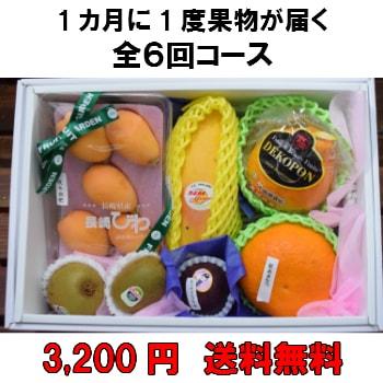 1カ月に1度果物が届く全6回【3,200円】 送料無料 100年以上続く老舗果物屋の3代目が選ぶ果物の盛り合わせ定期購入