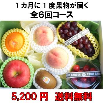 1カ月に1度果物が届く全6回【5,200円】 送料無料 100年以上続く老舗果物屋の3代目が選ぶ果物の盛り合わせ定期購入