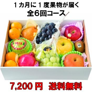 1カ月に1度果物が届く全6回【7,200円】 送料無料 100年以上続く老舗果物屋の3代目が選ぶ果物の盛り合わせ定期購入