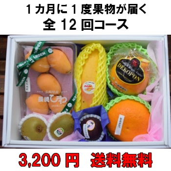 1カ月に1度果物が届く全12回【3,200円】 送料無料 100年以上続く老舗果物屋の3代目が選ぶ果物の盛り合わせ定期購入