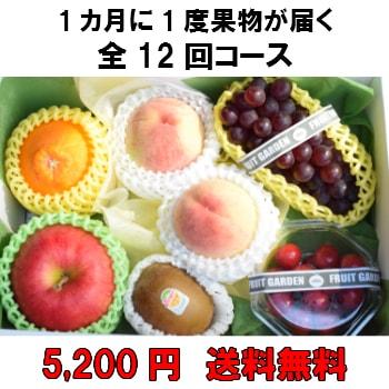 1カ月に1度果物が届く全12回【5,200円】 送料無料 100年以上続く老舗果物屋の3代目が選ぶ果物の盛り合わせ定期購入