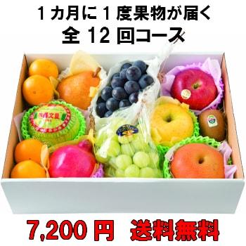 1カ月に1度果物が届く全12回【7,200円】 送料無料 100年以上続く老舗果物屋の3代目が選ぶ果物の盛り合わせ定期購入