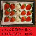 いちご5種食べ比べセット(白イチゴ入り) 15粒 2,500円【税込】 いちご/食べ比べ/gift/ギフト/贈り物