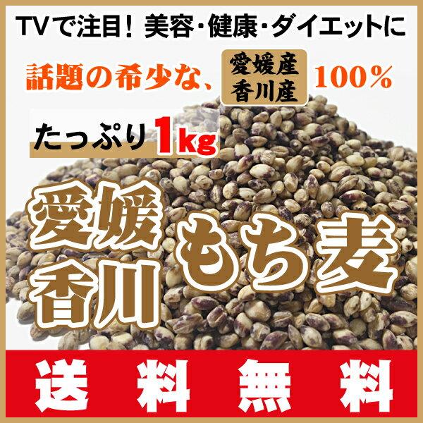 新麦・TV名医のTHE太鼓判!で放映ダイエットで注目!希少高品質な愛媛・香川産100%もち麦・ダイシモチ1kg(500gX2袋)送料無料