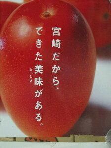 宮崎産 完熟宮崎マンゴー 大玉5Lサイズ(650g以上 1玉 化粧箱入り【贈答品】5月11日〜5月31日発送日付指定不可