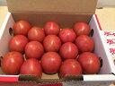 高糖度フルーツトマト 【アメーラ】静岡・長野産 2S〜Mサイズ 約900g