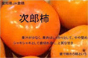 愛知県産JA豊橋 次郎柿 【...