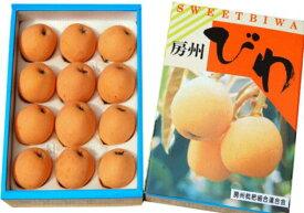 千葉産 皇室献上びわ 房州びわ 秀品 2Lサイズ 約700g 12玉 露地栽培