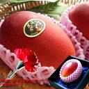 太陽のタマゴ 宮崎完熟マンゴー 母の日 プレゼント 母の日ギフト 母の日 太陽のタマゴ 母の日 マンゴー 母の日 プレゼ…