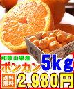 ゅわじゅわ オレンジ ポンカン