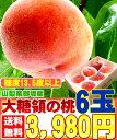 【7月初旬より発送開始】 桃 もも モモ 6玉入り 伝説の大糖領【お中元】【エコ包装】暑中お見舞い・残暑お見舞い…