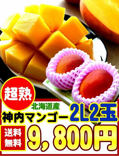 【送料無料】【糖度14度以上】北海道産[神内マンゴー2L2玉]