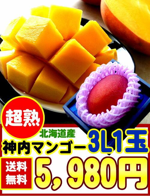 【送料無料】【糖度14度以上】北海道産[神内マンゴー3L1玉]