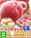 【送料無料】【お中元】【暑中見舞い】あま〜い桃です!糖度13.5以上!1玉300g以上の大玉です!山梨県御坂町[大玉大糖…