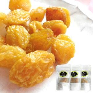 長野県産シャインマスカット [レーズン40g3袋] ドライフルーツ 保存食 国産レーズン 送料無料
