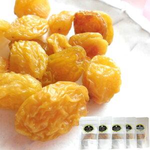 長野県産シャインマスカット [レーズン40g5袋] ドライフルーツ 保存食 国産レーズン 送料無料