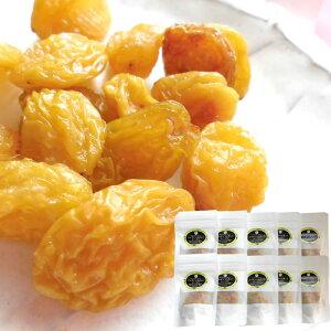 長野県産シャインマスカット [レーズン40g10袋] ドライフルーツ 保存食 国産レーズン 送料無料