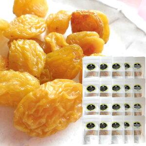 長野県産シャインマスカット [レーズン40g20袋] ドライフルーツ 保存食 国産レーズン 送料無料