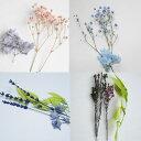 ハーバリウム 花材 お花一組セット キット プリザーブドフラワー ドライフラワー 少量パック材料 小分け ハンドメイド 植物標本