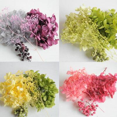 ハーバリウム 花材 あじさい2色セット かすみ草 小分け ハンドメイド 手作り 大地農園