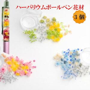 ハーバリウム ボールペン 花材 3個セット ドライフラワー 材料 かすみ草 大地農園