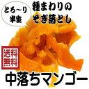 「中落ち 半生 ドライマンゴー」300g/100gが3パック マンゴー ドライフルーツ (中落マンゴー 100gパック×3)セブ産 全国送料無料