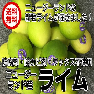 全国送料無料 常温便(レターパック ニュージーランド イエローライム 1kg)約10玉〜15玉 ポストハーベスト農薬不使用 青果 レターパック