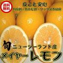 (クール便 メイヤーレモン NZ産 3kg )メイヤー マイヤー 防腐剤・ワックス不使用 レモン 防ばい剤不使用レモン ニュージーランド 送料無料 青果
