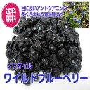ノンオイル ブルーベリー 140g/70gが2パック 野生種 ドライフルーツ(ブルーベリー×2)お試し商品 ワイルド 全国送料無料