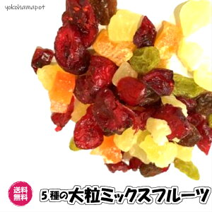 5種の(大粒ミックス 1kg/500g×2) ドライフルーツ 全国送料無料